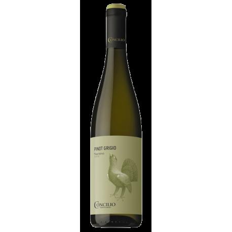 Pinot Grigio Trentino D.O.C.